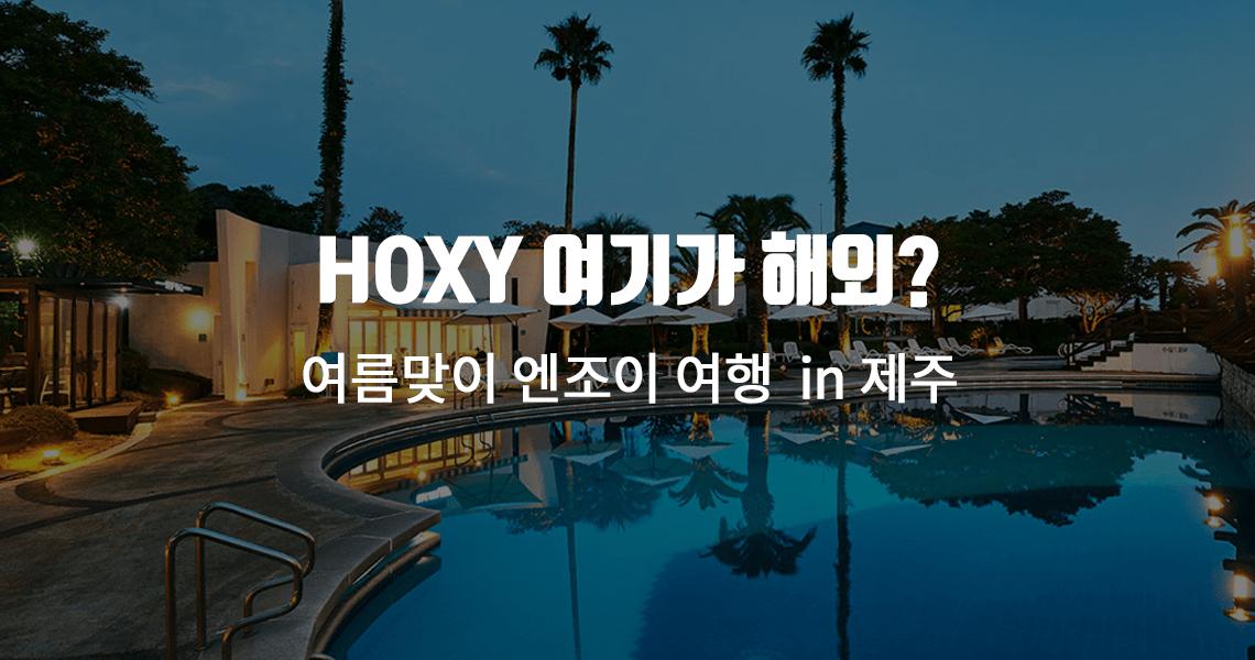 HOXY 여기가 해외?